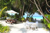 モルディブの海とビーチカフェ