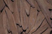 鰹節 10120000420| 写真素材・ストックフォト・画像・イラスト素材|アマナイメージズ