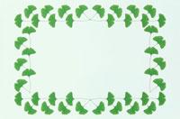 緑葉の四角いフレーム 10120001243| 写真素材・ストックフォト・画像・イラスト素材|アマナイメージズ