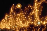 シャンゼリゼ通りのクリスマスイルミネーション 10120001916| 写真素材・ストックフォト・画像・イラスト素材|アマナイメージズ