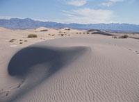 砂丘 10120002817| 写真素材・ストックフォト・画像・イラスト素材|アマナイメージズ