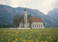 タンポポ畑に建つ教会