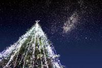 クリスマスツリー 10131001108  写真素材・ストックフォト・画像・イラスト素材 アマナイメージズ