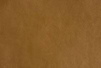 皮革 10131003450| 写真素材・ストックフォト・画像・イラスト素材|アマナイメージズ
