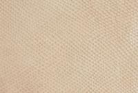 皮革 10131003454| 写真素材・ストックフォト・画像・イラスト素材|アマナイメージズ