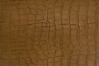 皮革 10131003455| 写真素材・ストックフォト・画像・イラスト素材|アマナイメージズ