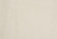 皮革 10131003456| 写真素材・ストックフォト・画像・イラスト素材|アマナイメージズ