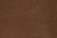 皮革 10131003457| 写真素材・ストックフォト・画像・イラスト素材|アマナイメージズ