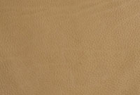 皮革 10131003458| 写真素材・ストックフォト・画像・イラスト素材|アマナイメージズ