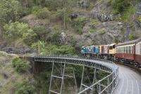 キュランダ鉄道 10131013226| 写真素材・ストックフォト・画像・イラスト素材|アマナイメージズ