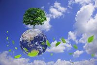一本の木と地球