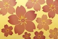 桜の花 10131018608| 写真素材・ストックフォト・画像・イラスト素材|アマナイメージズ