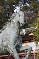 諏訪神社の神馬像 10131027273| 写真素材・ストックフォト・画像・イラスト素材|アマナイメージズ