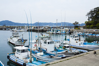 菅島の漁港