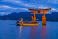 夕暮れの宮島の大鳥居と遊覧船