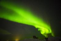 フィンランド(サーリセルカ)のオーロラ 10131035738| 写真素材・ストックフォト・画像・イラスト素材|アマナイメージズ