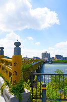 日本三古橋の宇治橋