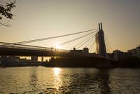 大川に架かる川崎橋 10131036888  写真素材・ストックフォト・画像・イラスト素材 アマナイメージズ