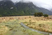 湿原の眺め