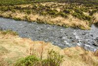 ミルフォードを流れる清川