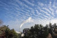 鱗雲を背景に、たなびく工場の煙 10131037359| 写真素材・ストックフォト・画像・イラスト素材|アマナイメージズ