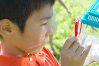 虫眼鏡で虫カゴを覗く少年