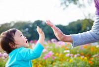コスモス畑の前でハイタッチをする孫とおばあちゃん