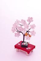 桜の木の下でお団子とお花見