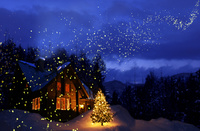 宙を舞う星とクリスマスツリーのある家の風景 10132111512| 写真素材・ストックフォト・画像・イラスト素材|アマナイメージズ