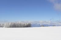 雪山の風景 10132112604| 写真素材・ストックフォト・画像・イラスト素材|アマナイメージズ