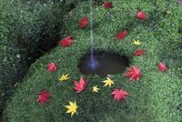 苔のつくばいと紅葉の落ち葉