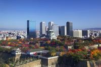 秋の大阪城と大阪ビジネスパーク