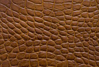 革 10137002638| 写真素材・ストックフォト・画像・イラスト素材|アマナイメージズ