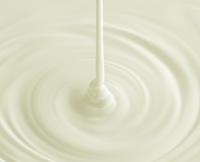 ホワイトチョコレート 10137006702| 写真素材・ストックフォト・画像・イラスト素材|アマナイメージズ