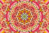 色々の花のパターン