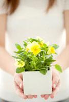 ビオラの鉢植えを持つ女性