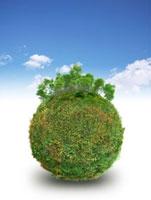 青空背景に草の球体の上に新緑の木々