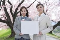 桜並木をバックにホワイトボードを持つ女子高生と女性教師
