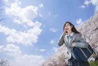 桜並木と青空をバックに叫ぶ女子高生