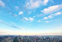 東京タワーと都心の街並 10146003593| 写真素材・ストックフォト・画像・イラスト素材|アマナイメージズ