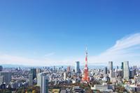 東京タワーと都心の街並 10146003619| 写真素材・ストックフォト・画像・イラスト素材|アマナイメージズ
