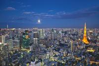 ライトアップされた東京タワーと都心の街並