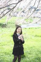 桜並木の下でスマートフォンを操作する女子中学生