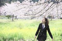桜並木の下ではしゃぐ女子中学生