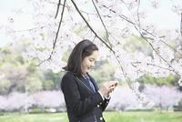 桜並木の下でスマートフォンを操作する女子中学生 10146003761| 写真素材・ストックフォト・画像・イラスト素材|アマナイメージズ