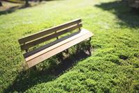 緑の中の木造ベンチ