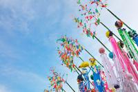 湘南ひらつか七夕まつり 10146004296| 写真素材・ストックフォト・画像・イラスト素材|アマナイメージズ