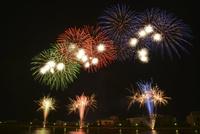 新潟祭りの花火大会