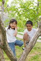 木に登る男の子と女の子