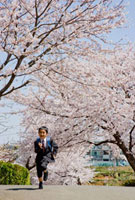桜と走る小学一年生の男の子 10154000079| 写真素材・ストックフォト・画像・イラスト素材|アマナイメージズ
